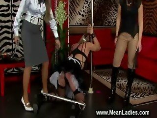 Domina performs CBT on pathetic sissy