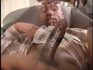 Black stallion fucking sexy ethnic whore