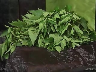 Queensnake.com - Nettle Virgin - Suzy 1