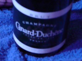 Sekt-, Champagner-Flasche in Pussy