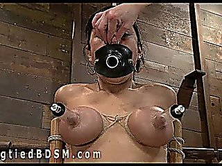 Hogtied Brunette Tormented By Mistress