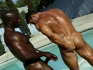 Hot Muscular Gay Guys Suck And Fuck In Interracial Action