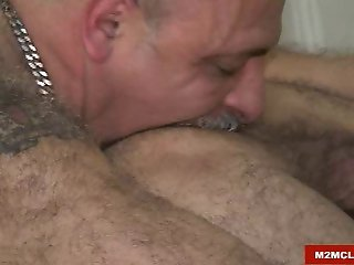 Hairy bears barebacking