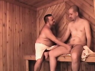 One bear, one men in sauna